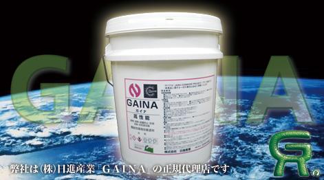 gaina_bana2